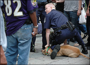 Oakland Police brutalizing a dog...when will their reign of terror end?
