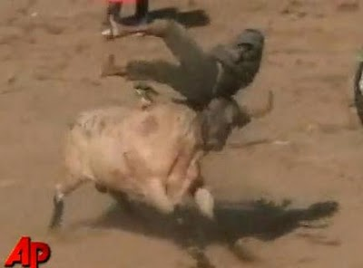 Colombian Man Gored To Death By A Tortured Bull At Festival...