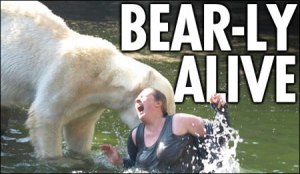 Reports of Knut the bear being involved in violent maulings with female bears...