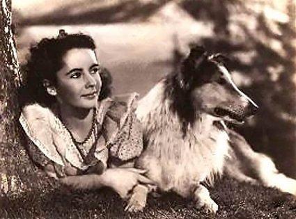 Elizabeth Taylor and Lassie