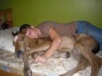 Man sleeping with horse