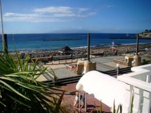 View of Arona,Terife